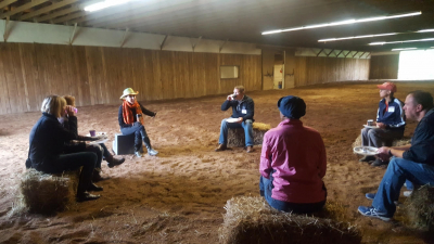 Learning lessons at HorseTalk